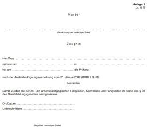 Screenshot des Ausbilderscheins, Variante 1 als Anlage 1 der AEVO