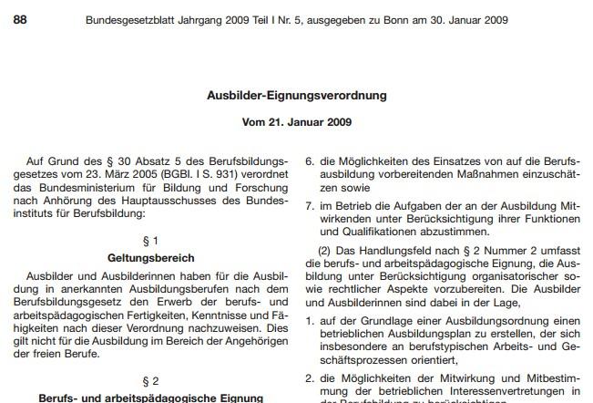 Screenshot der Ausbilder-Eignungsverordnung (AEVO)