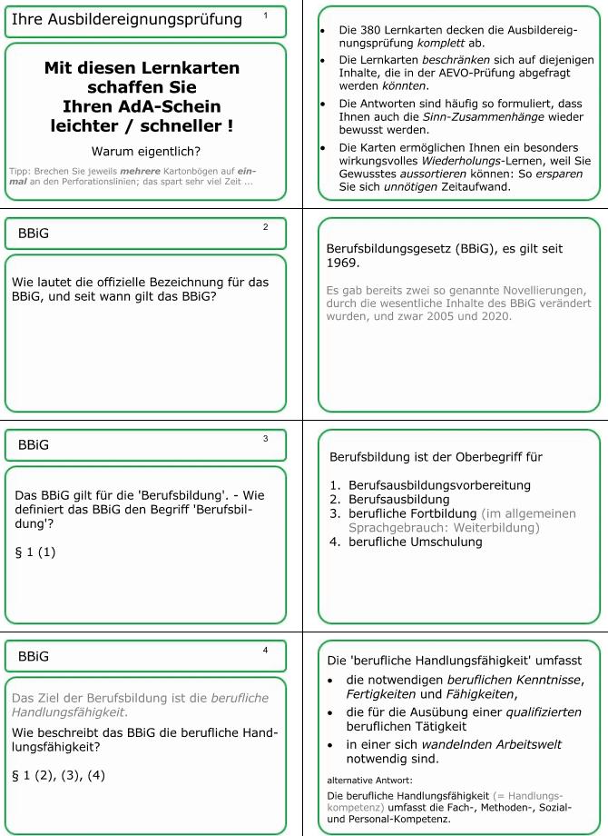 die ersten vier Karten der AEVO-Lernkartei