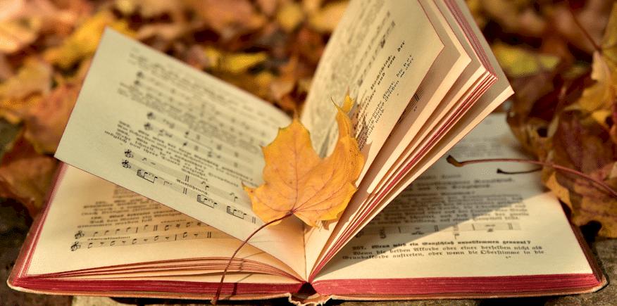 Symbolbild: ein aufgeschlagenes, offenbar antiquarisches Buch