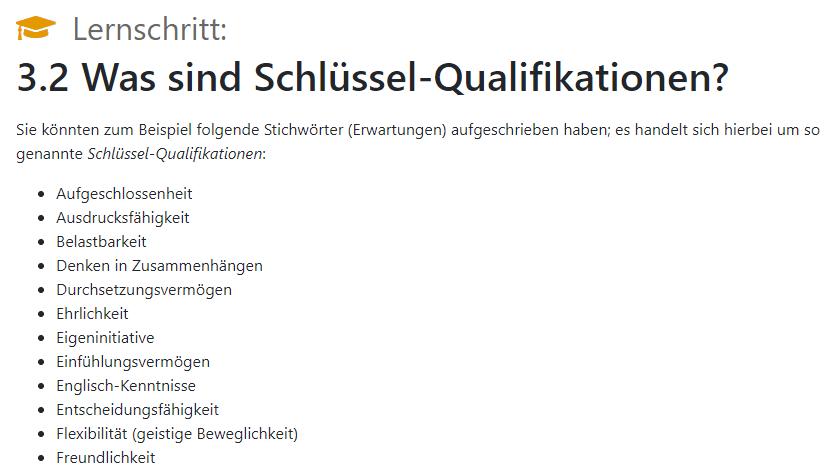 Ausschnitt aus der Auflistung von Schlüssel-Qualifikationen